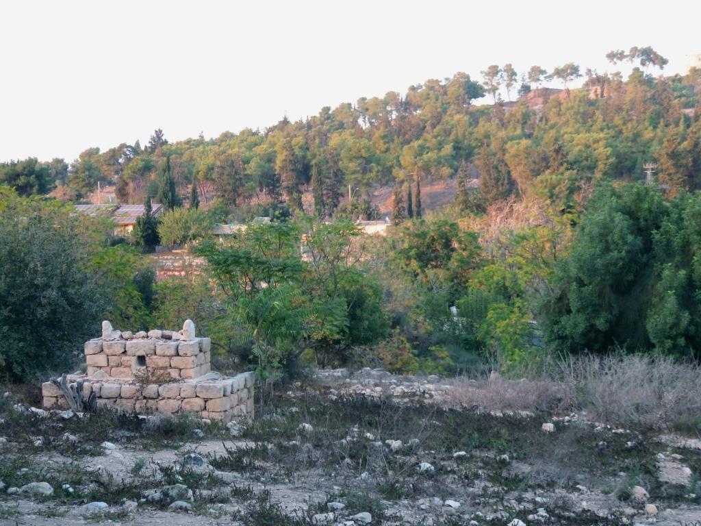 Saffuriyya en 2016 : ne restent que quelques traces du cimetière